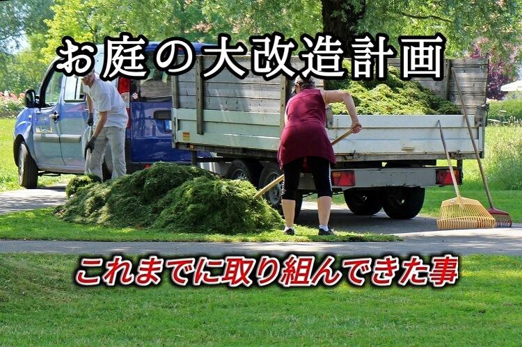 お庭の掃除