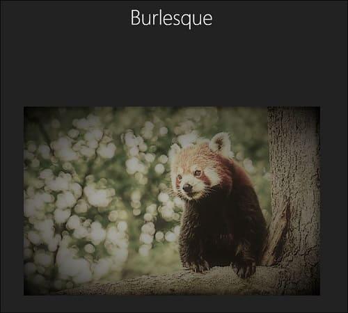 フィルター(Burlesque)