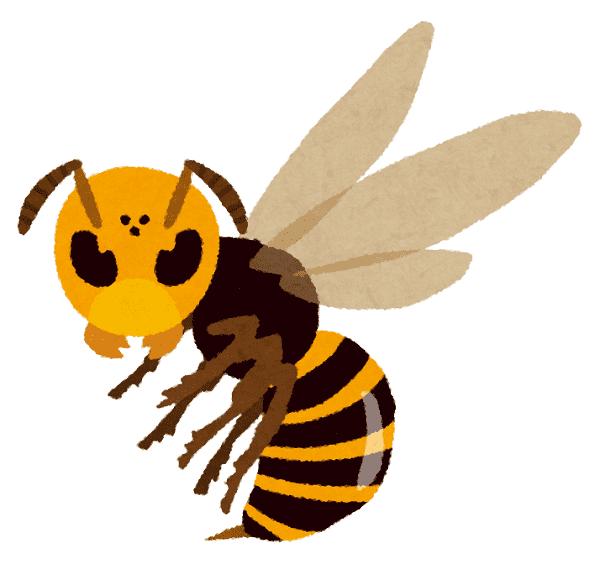 シマトネリコ スズメバチ注意