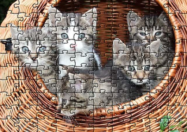 ネコのパズル(10×10)