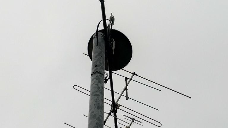 アンテナを立て直す