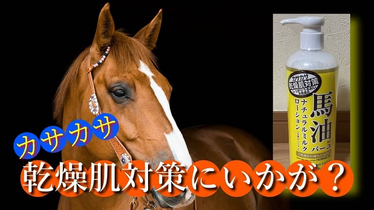 馬と馬油ローション