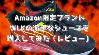 Amazon限定ブランドのWLKの靴(シューズ)を会社の通勤用に購入してみたら!?